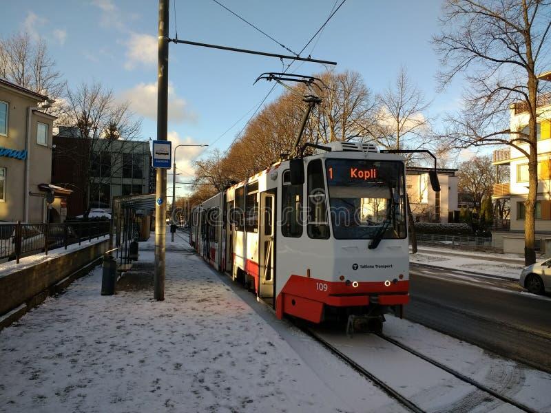 Tram nella città Estonia di Tallinn immagine stock libera da diritti
