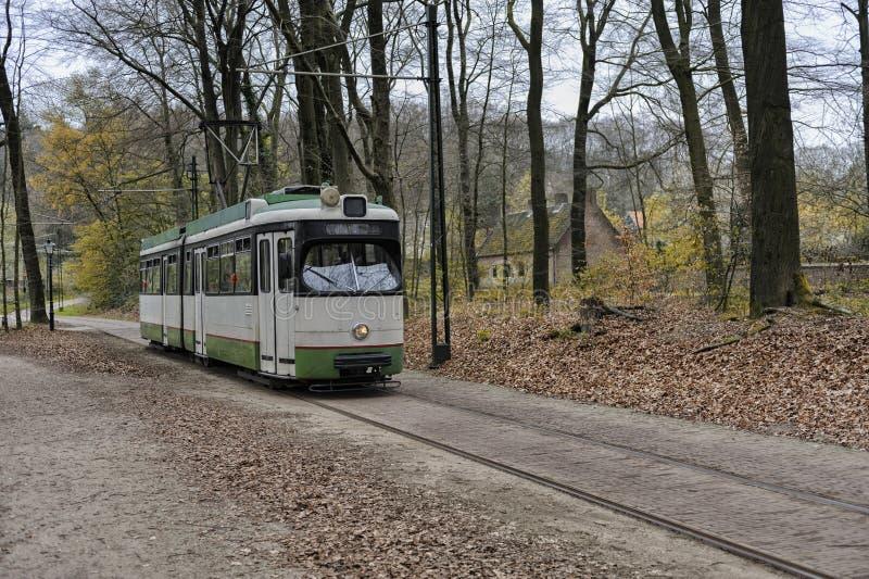 Tram rides through the park stock photo