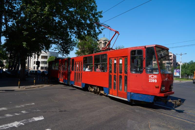 Tram rouge à Belgrade photo stock