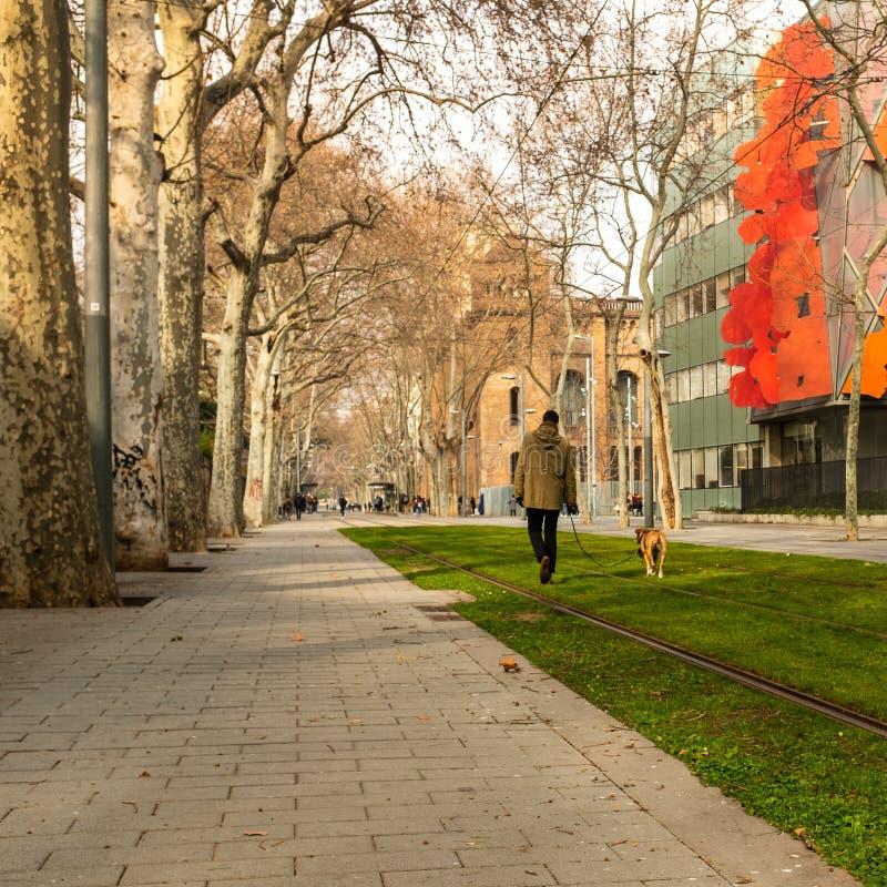 Tram tracks in Wellington Street Barcelona, Spain near the Barcelona Graduate School of Economy stock image