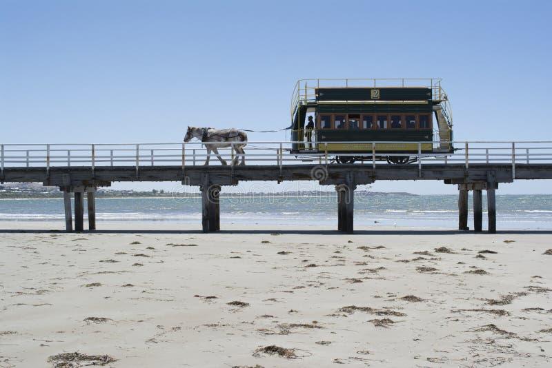 Tram trainato da cavalli, Victor Harbor, penisola di Fleurieu, Austr del sud fotografia stock