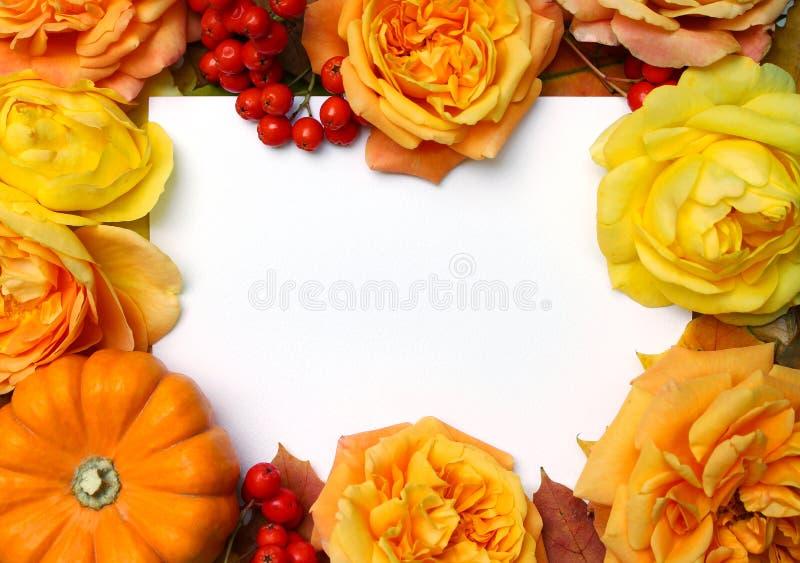 Trame d'automne L'érable, feuilles de chêne, potiron orange, roses, baies de sorbe et vident la carte de livre blanc Concept de c images libres de droits