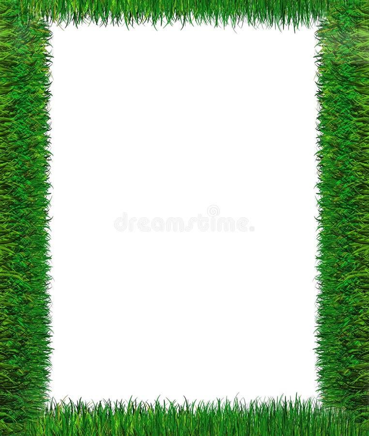 Trame d'herbe verte illustration de vecteur