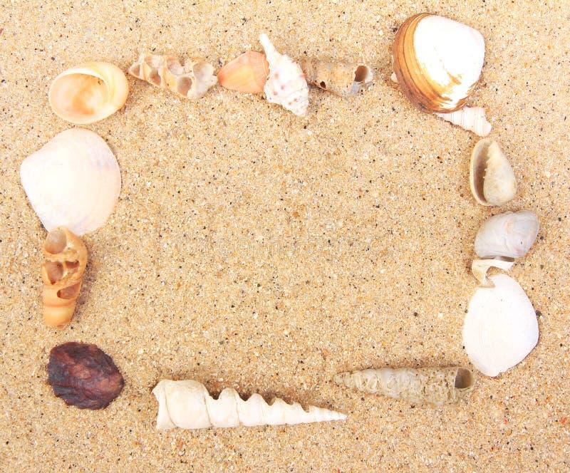 Trame d'interpréteur de commandes interactif de mer sur le sable images libres de droits