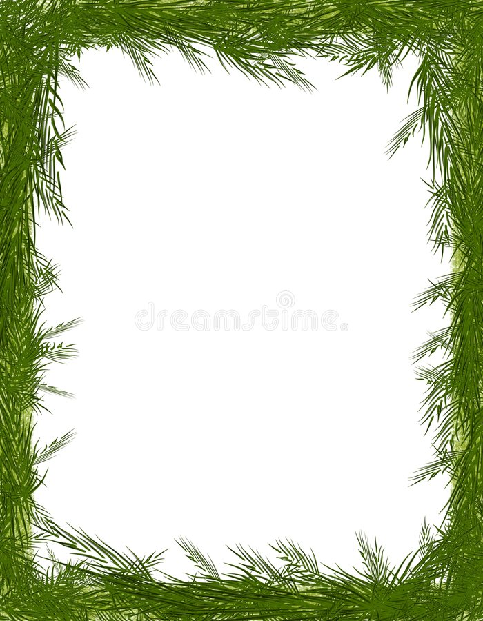 Trame de branchement d'arbre de pointeau de pin illustration libre de droits