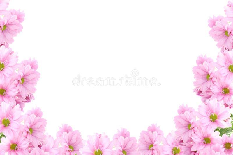 trame de fleurs photos stock