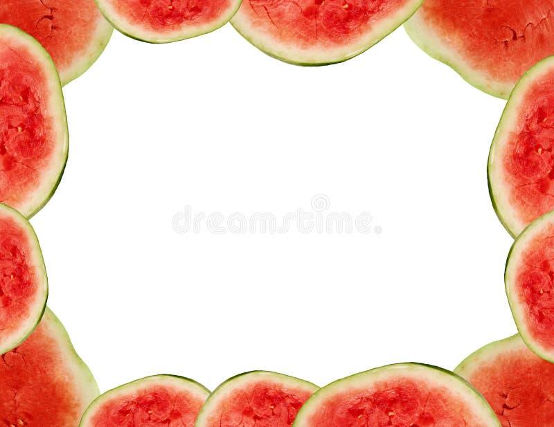 Trame de pastèque photo stock