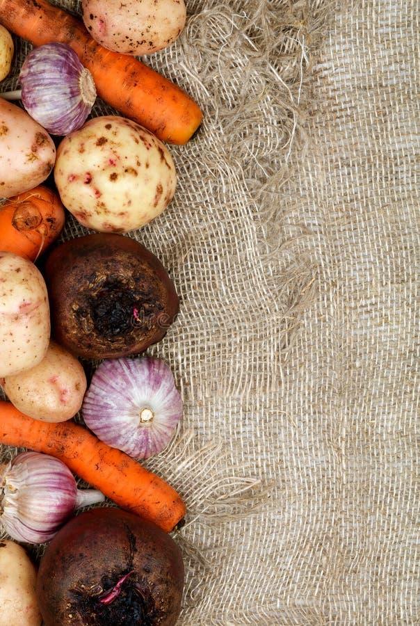 Trame des légumes photos libres de droits