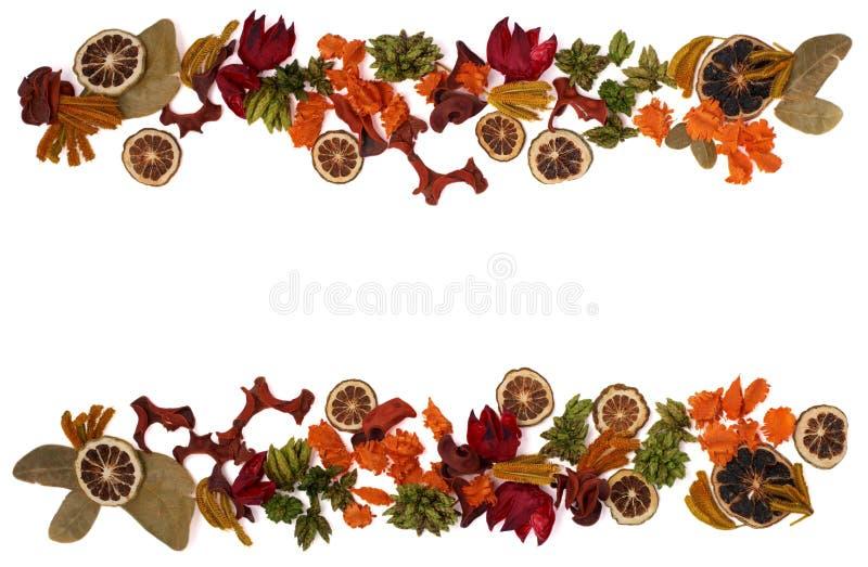 Trame florale photos stock