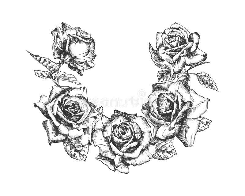 Trame florale Le croquis tiré par la main des roses, des feuilles et des branches a détaillé l'illuatration botanique de cru illustration stock