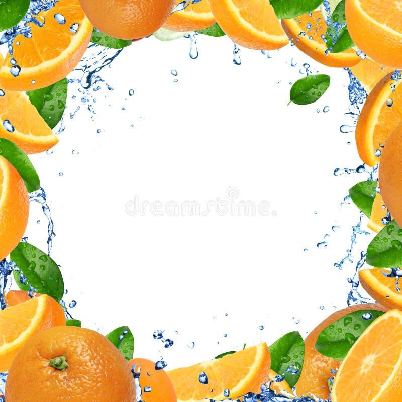 Trame orange fraîche de parts illustration de vecteur