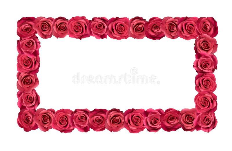 Trame rose de roses photographie stock