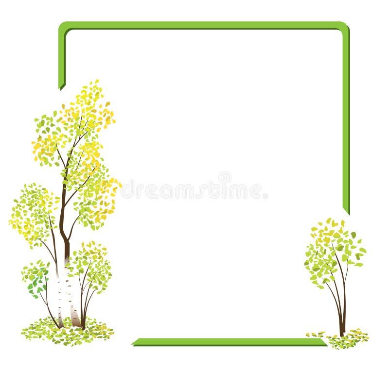 Trame verte de vecteur avec les bouleaux d'automne illustration de vecteur