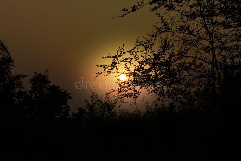 tramonti fotografia stock