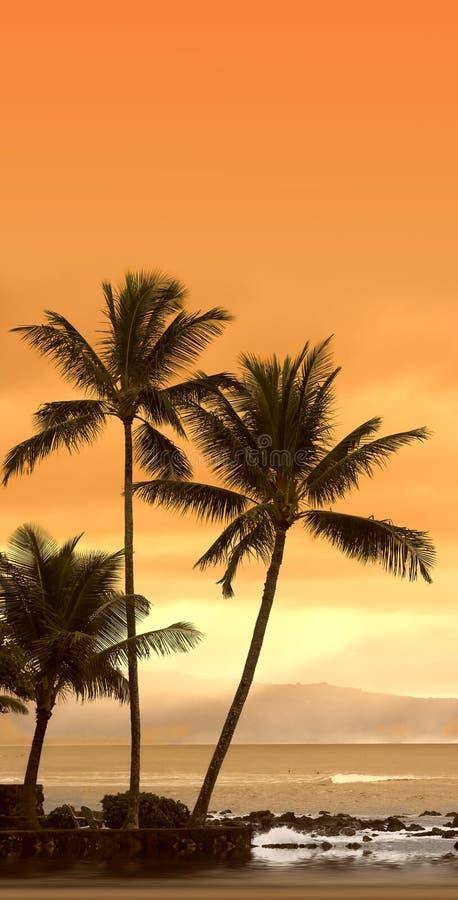 Tramonto ad Oahu, Hawai immagine stock