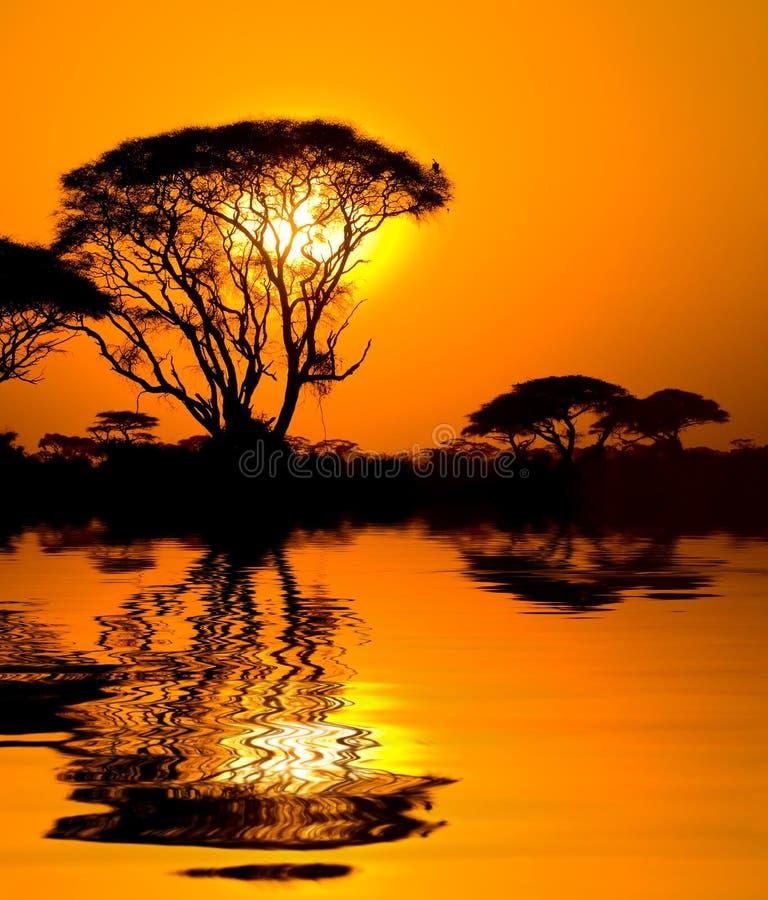 Tramonto africano con la riflessione fotografia stock libera da diritti