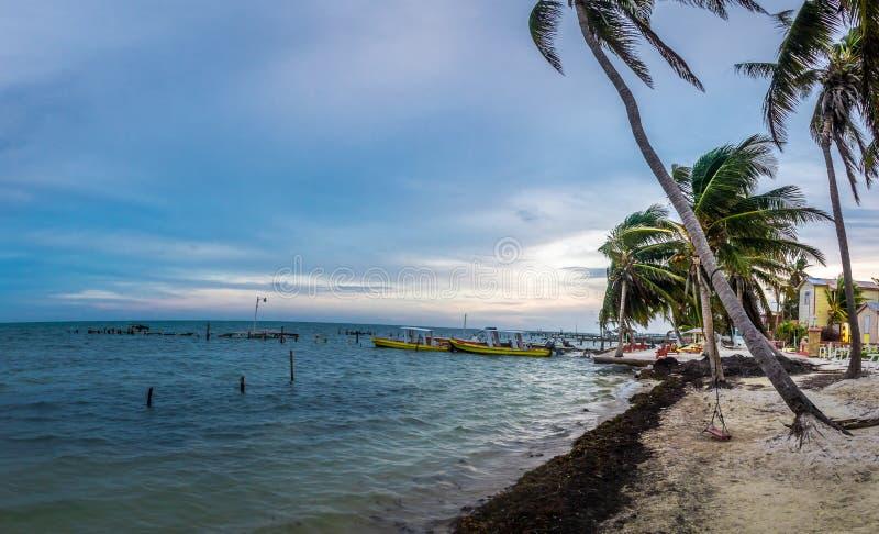 Tramonto al calafato di Caye - Belize immagini stock libere da diritti