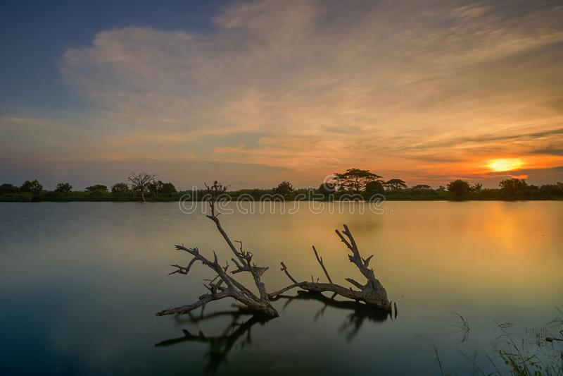 Tramonto, alba, Tanjung Burung, Tangerang, albero, paesaggio, natura fotografie stock libere da diritti