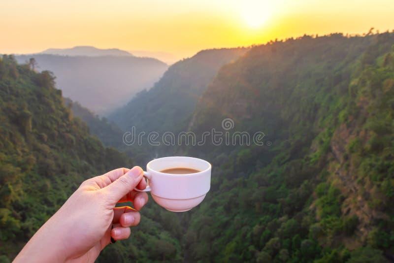 Tramonto bello con una tazza di caffè alla foresta profonda in del sud del Laos fotografia stock libera da diritti
