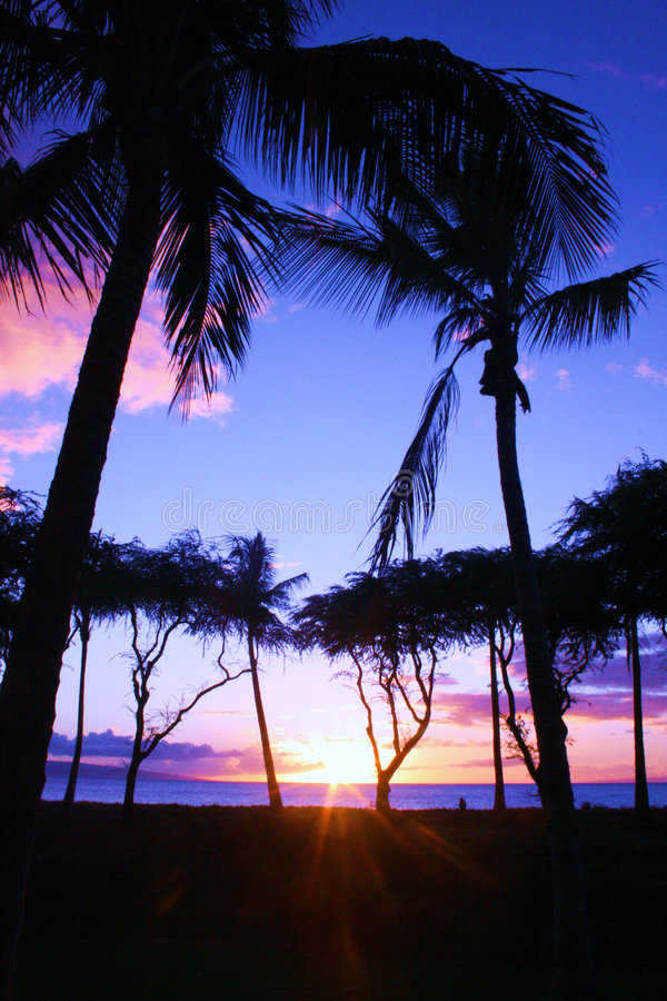 Tramonto blu e dentellare del Maui immagine stock