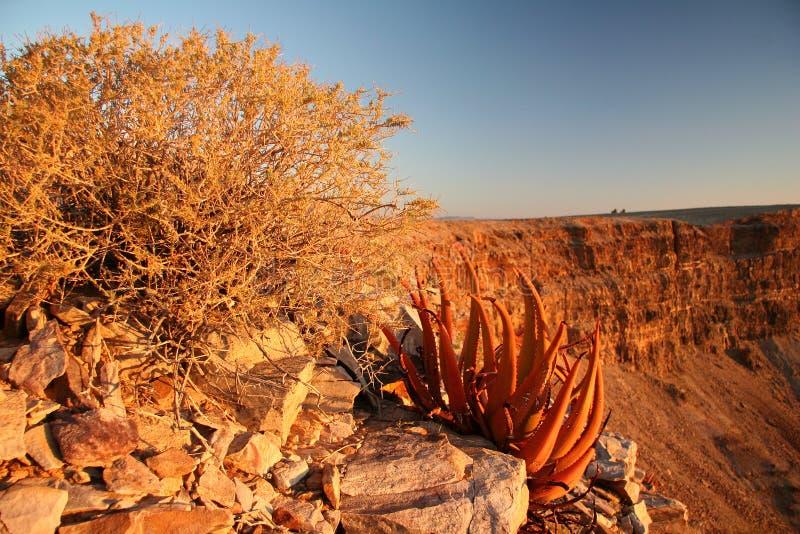 Tramonto in canyon del fiume dei pesci fotografie stock
