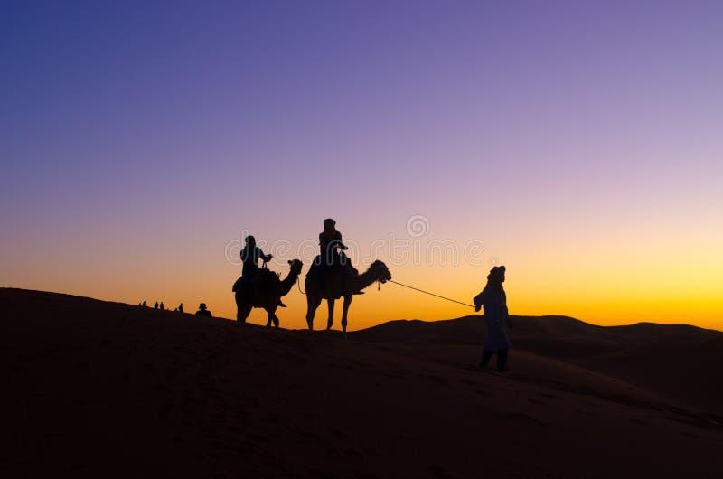 Tramonto con il caravan sul deserto del Sahara immagine stock libera da diritti
