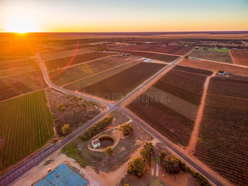 Tramonto con il chiarore del sole sopra le zone agricole in Riverland fotografie stock libere da diritti