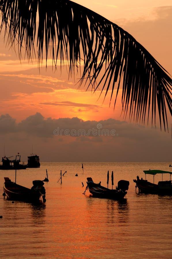 Download Tramonto Con La Palma E Le Barche Sulla Spiaggia Tropicale Fotografia Stock - Immagine di palma, coconut: 30825730
