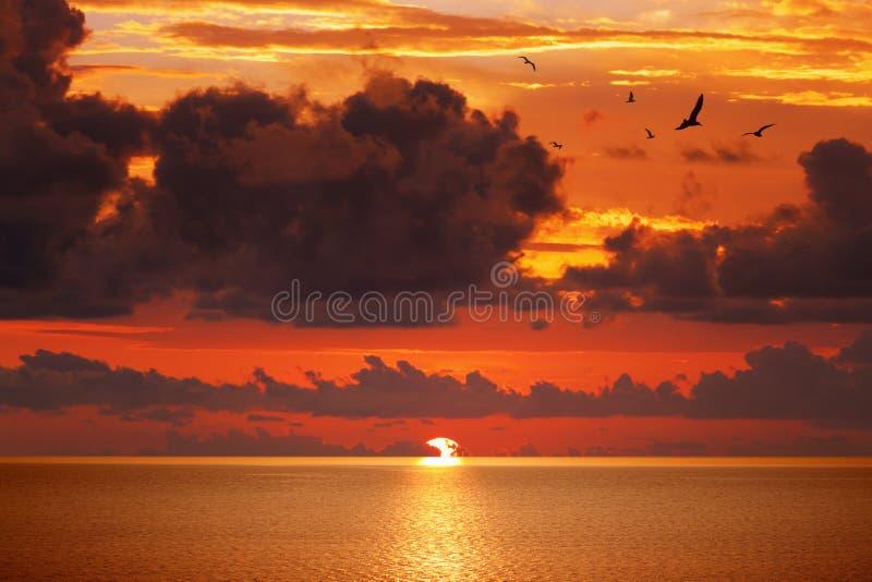 Tramonto d'ardore rosso sopra il mare sereno fotografia stock libera da diritti