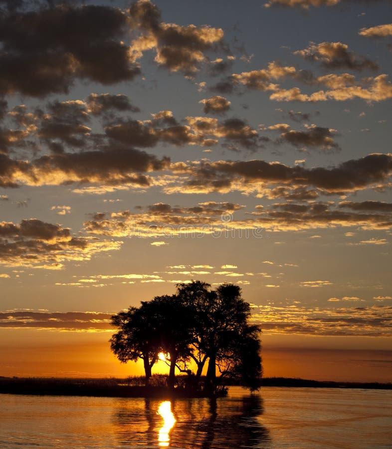 Tramonto del Botswana fotografia stock libera da diritti