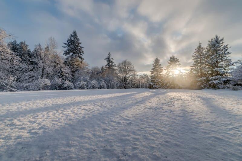 Tramonto del campo di neve fotografia stock