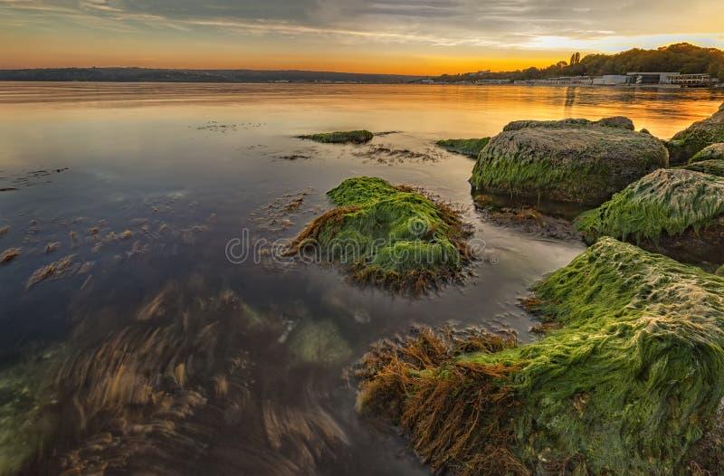 Tramonto del mare con muschio variopinto sopra le rocce fotografie stock libere da diritti