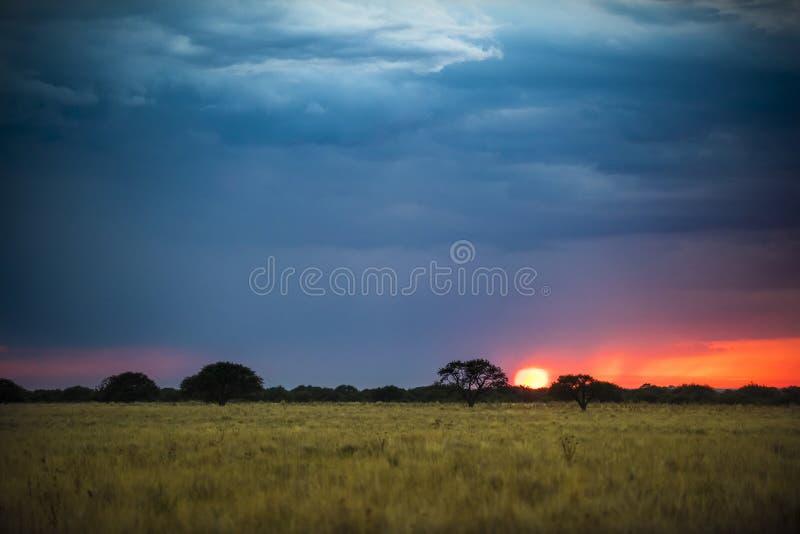 Tramonto del paesaggio di Pampa fotografia stock