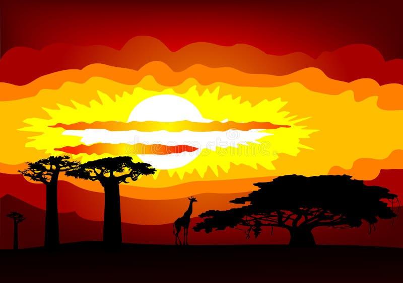 Tramonto dell'Africa - vettore illustrazione vettoriale
