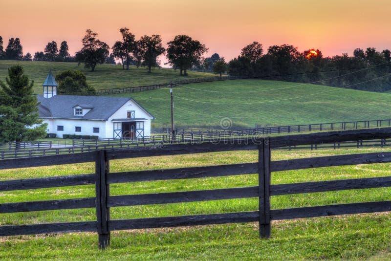 Tramonto dell'azienda agricola del cavallo fotografia stock