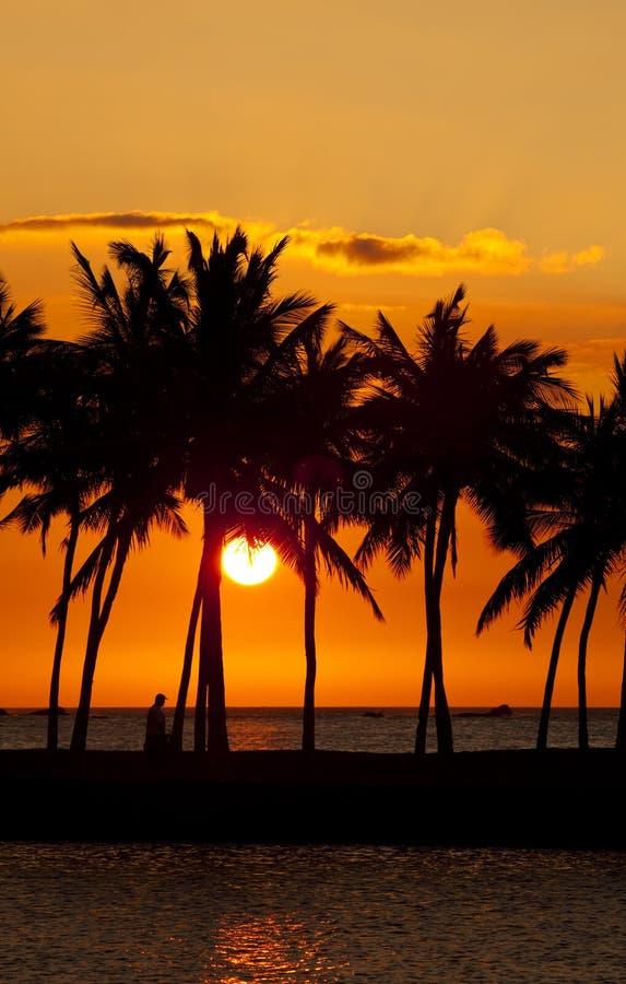 Tramonto della baia di Anaehoomalu fotografie stock