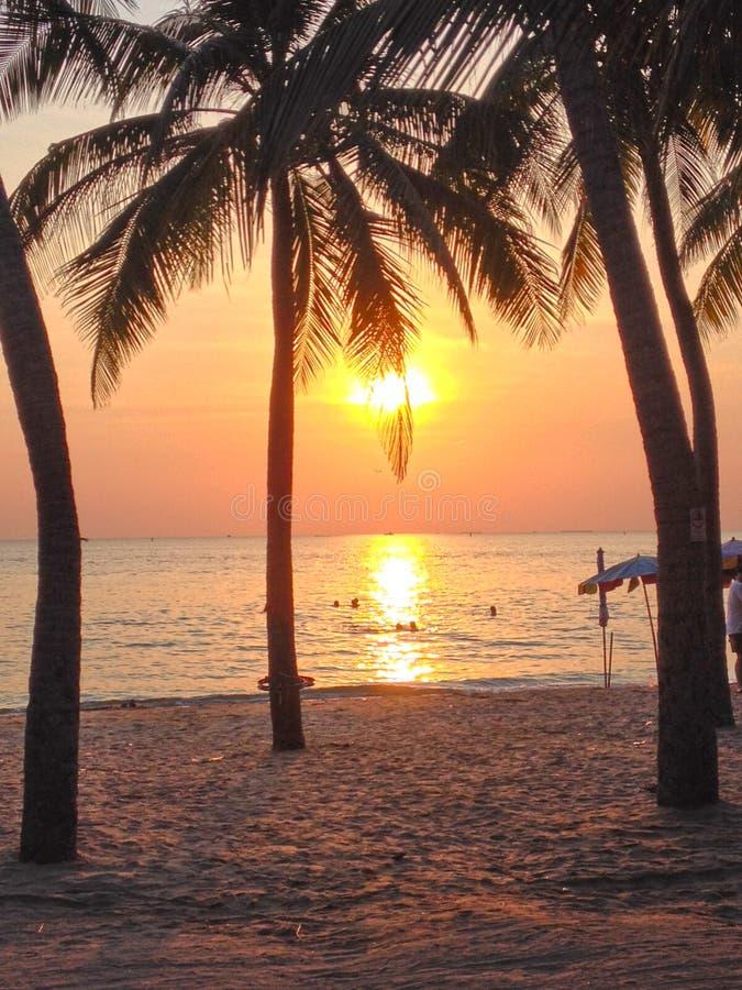 Tramonto della spiaggia e fondo di bellezza fotografia stock libera da diritti