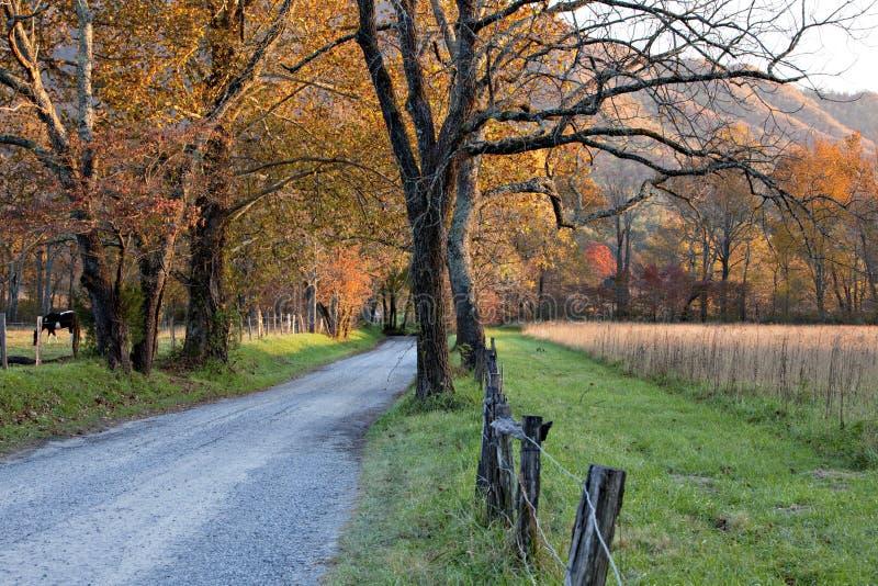 tramonto della strada non asfaltata fotografie stock libere da diritti