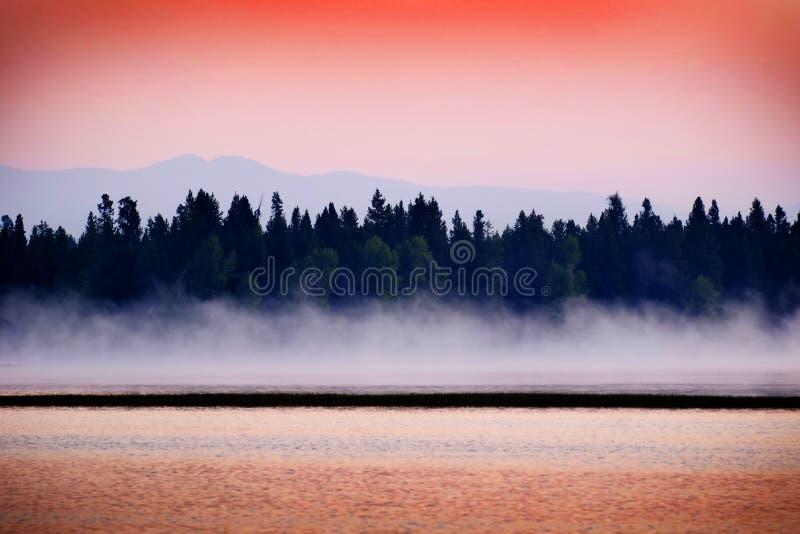Tramonto di alba sul lago con foschia che aumenta dai pini e dalle montagne dell'acqua nel fondo fotografia stock