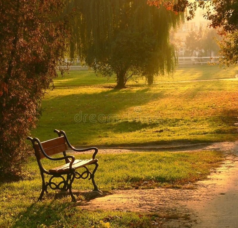 Tramonto di autunno fotografia stock libera da diritti