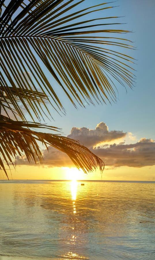 tramonto di dhiffushi delle Maldive fotografie stock