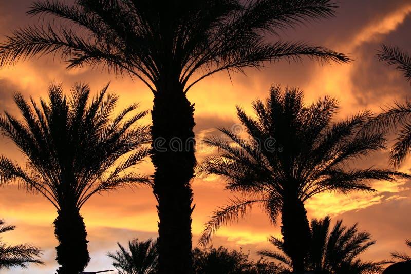 Tramonto di Las Vegas immagine stock libera da diritti