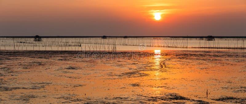 Tramonto di panorama sopra la riva e la zona umida di mare con le coperture della siluetta fotografia stock libera da diritti