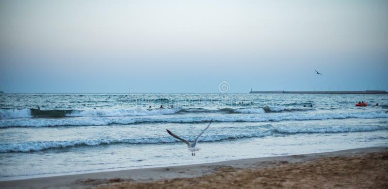 Tramonto di panorama sulla spiaggia fotografie stock