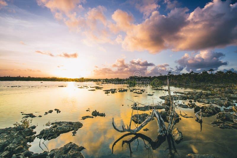 Tramonto di Reflectin del legname galleggiante fotografie stock libere da diritti