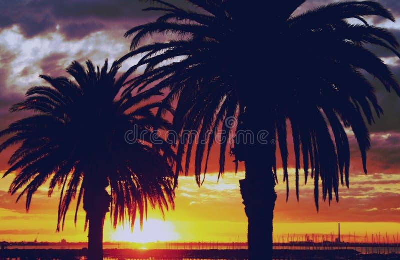 Tramonto dorato, Australia immagine stock