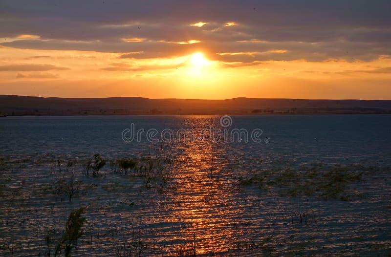 Tramonto dorato sul lago Wilson fotografia stock libera da diritti