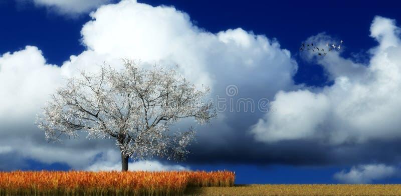 Tramonto ed albero illustrazione vettoriale