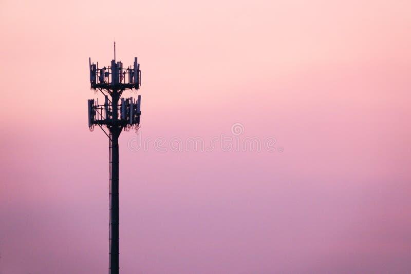 Tramonto ed albero alto con l'antenna cellulare fotografie stock