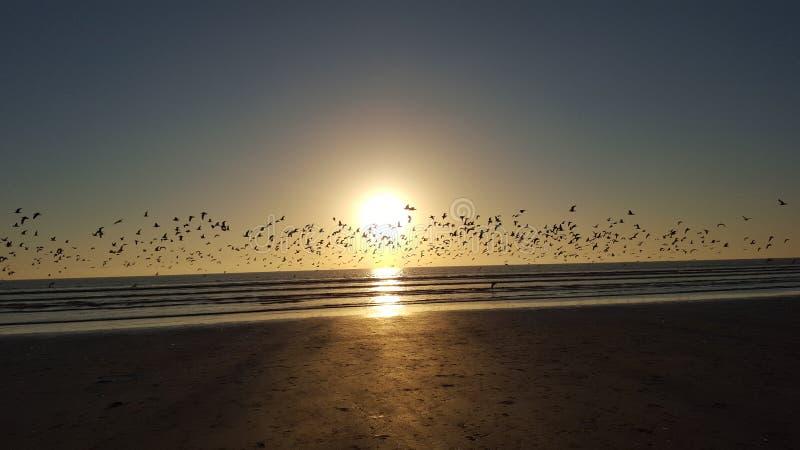 Tramonto il Belucistan della spiaggia di Gwadar immagini stock